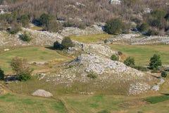 Felsen und Bäume Stockfotografie
