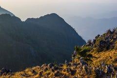 Felsen und Bäume auf Berg Stockfotos
