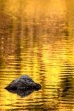 Felsen- und Goldherbstseereflexionen stockbilder