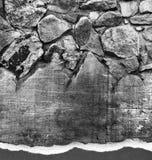 Felsen und Holz Lizenzfreies Stockfoto