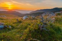 Felsen und Holz in der Sonnenaufgangsommerlandschaft Stockfotos