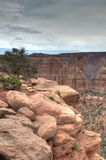 Felsen und Landschaft in Colorado Stockbilder