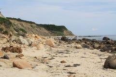 Felsen und Meerespflanze entlang dem Strand Lizenzfreies Stockbild