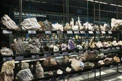 Felsen und Mineralien an Planeten vida Ausstellung. Museu Blau stockbild