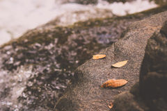 Felsen- und Wasserfall Lizenzfreie Stockfotos
