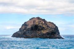 Felsen von Garachico Tenerife, Kanarische Inseln, Spanien Lizenzfreies Stockbild