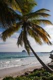Felsen von Le Diamand, Martinique Stockfotos