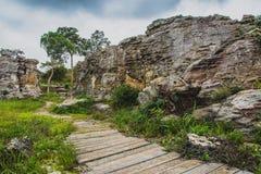 Felsen-Wald des Naturlehrpfads Thailand stockfoto