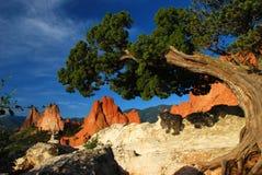 Felsenanordnungen des roten Sandsteins Stockbild
