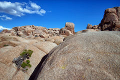 Felsenanordnungen im Joshua-Baum-Nationalpark stockfoto