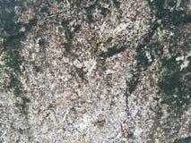 Felsenbeschaffenheit 01 Hintergrund Schwarzweiss stockfoto