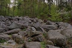 Felsenmeer Στοκ εικόνα με δικαίωμα ελεύθερης χρήσης