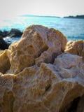 Felsennahaufnahme an der Küste Stockfoto