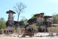 Felsensäulen (Sao cha Liang) Stockfotos