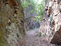 Felsenschnitttunnel in Richtung zum Wald Stockbilder