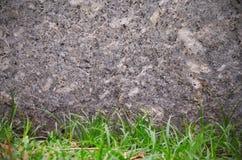 Felsensteinwand und grünes Gras masern Hintergrund Stockfoto