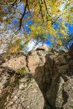 Felsenwand und Herbstfarben Lizenzfreie Stockfotos