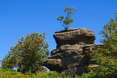 Felsformation an Brimham-Rock, Yorkshire Lizenzfreie Stockbilder