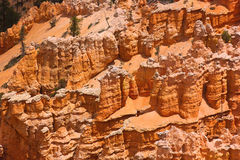 Felsformation in Bryce Schlucht Stockbilder