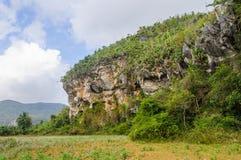 Felsformationen in Vinales-Tal, Kuba stockfotografie