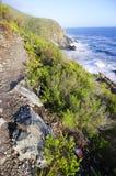 Felshügel durch den Ozean Lizenzfreie Stockbilder