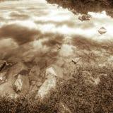 Felsig Lakeshore Stockbild