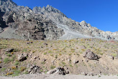 Felsige Berge Anden Stockfoto