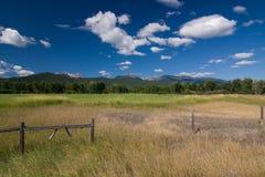 Felsige Berge in Montana stockfotografie
