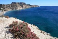 Felsige Küste der Agua-Armada lizenzfreies stockfoto