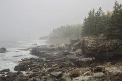 Felsige Küste des acadia-Nationalparks Lizenzfreie Stockbilder