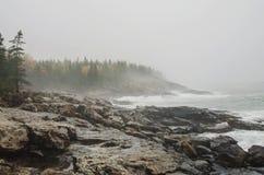 Felsige Küste des acadia-Nationalparks Lizenzfreie Stockfotos