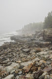 Felsige Küste des acadia-Nationalparks Lizenzfreies Stockfoto