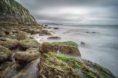 Felsige Küste in Irland Stockbild