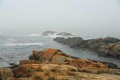 Felsige Küste in Maine Stockfoto