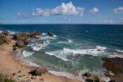 Felsige Küste von Barbados Lizenzfreie Stockbilder
