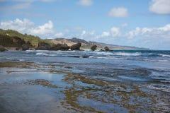Felsige Küste von Barbados Lizenzfreies Stockfoto