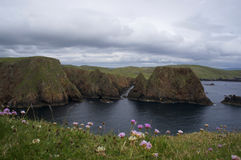 Felsige Küste von den Shetlandinseln Lizenzfreies Stockfoto