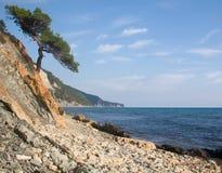 Felsige Küste von Schwarzem Meer Stockfotos