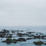 Felsige Küstenlinie Stockbild