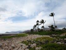 Felsige Küstenlinie bei Ko Olina stockbild