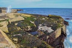 Felsige Küstenlinie der Hauptleitung Stockfoto