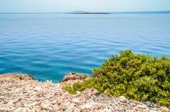 Felsige Küstenlinie mit einem Busch und einem haarscharfen blauen adriatischen Meer Lizenzfreie Stockfotografie