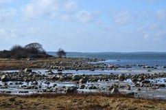 Felsige Küstenlinie am Niedrigwasser Stockbild