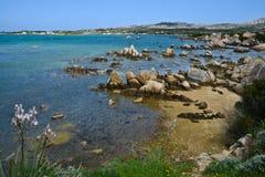 Felsige Küstenlinie in Sardinien, Italien Lizenzfreie Stockbilder