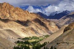 Felsige Landschaft von Ladakh mit grünem Tal, Leh, Jammu und Kashmir, Indien Stockfotografie