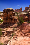 Felsige Schlucht Canyonlands im Nationalpark Stockbild