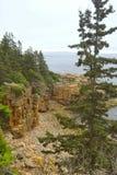 Felsige Seeküste, Acadia Lizenzfreie Stockfotografie