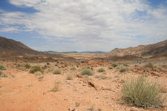 Felsige Wüsten-Landschaft Lizenzfreie Stockbilder