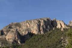 Felsiger Berg mit Kiefern Blauer Himmel lizenzfreies stockbild