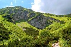 Felsiger Berghang umfasst mit Gras Stockfotos
